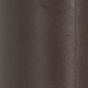 color-kiwi-